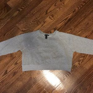 Gray Cropped Crew Neck